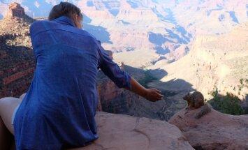 Pažintis su indėnais ir Didysis kanjonas
