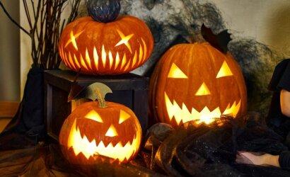 Paprastai ir greitai: kaip išpjaustyti Helovino nakties žibintą iš moliūgo