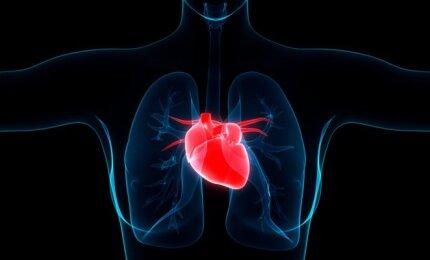 jaunų žmonių hipertenzija)