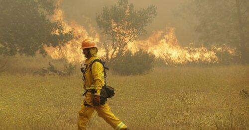 Savaitgalį prognozuojamas didesnis miškų gaisringumas: miškininkai stiprina priežiūrą
