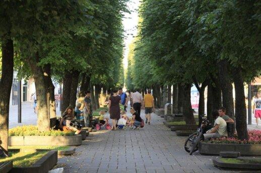 Savaitgalis Kaune: ką aplankyti su šeima