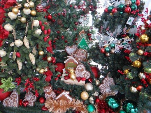 Yra tokių žmonių, kuriems nuolat rūpi Kalėdos.