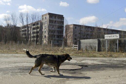 """<span style=""""color: #ff0000;"""">Černobylis – negyjanti žaizda.</span> Nematomas nuodų debesis užgulė 17 Lietuvos rajonų"""