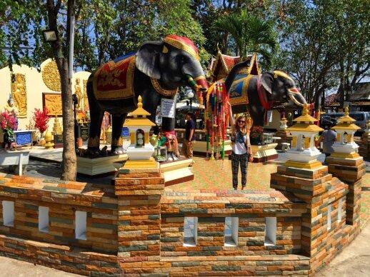 Ievos ir Donato akimirkos Tailande