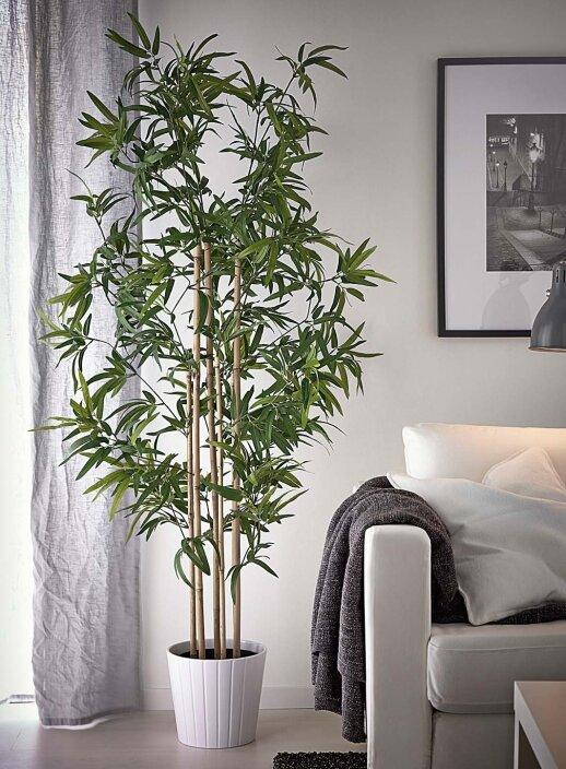 augaliniai motyvai interjere nuo imitacij iki