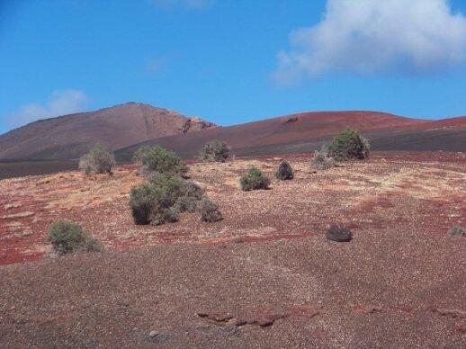 Timanfaya nacionalinis parkas Lanzarotėje
