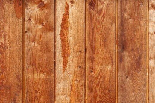 Darbams naudojama mediena: maumedis