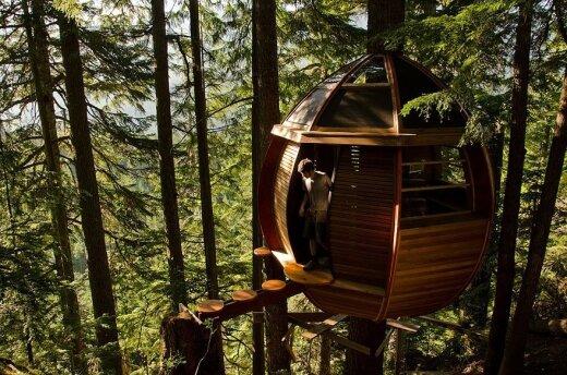 Įspūdingiausi pasaulio nameliai medyje