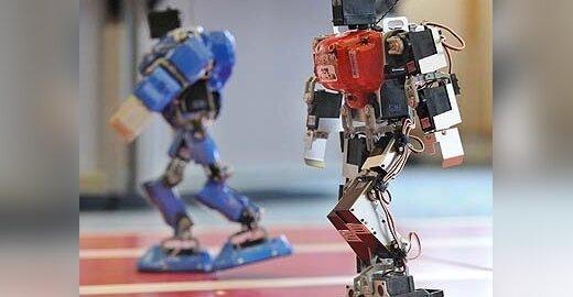 ES sienas saugos robotų armija?
