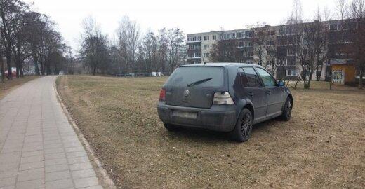 Automobilis pievoje
