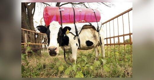 ES ketina ginti savo žemės ūkio politiką, tačiau numato riboti didžiausias išmokas