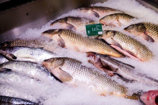 Kelis kartus per savaitę žuvį valgančių lietuvių sumažėjo perpus: profesorius Stukas turi paaiškinimą, kas nutiko