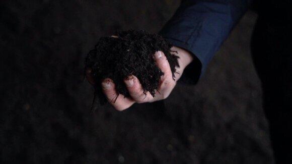 Kompostas – natūrali trąša
