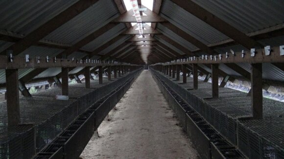 Kailinių žvėrelių fermos Lietuvoje