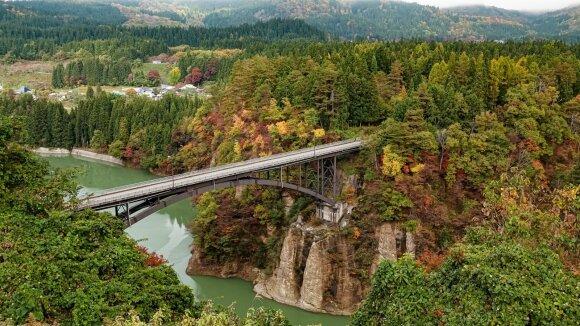 Nuo Fukušimos atominės elektrinės avarijos praėjo aštuoneri metai: kaip dabar atrodo šis regionas?