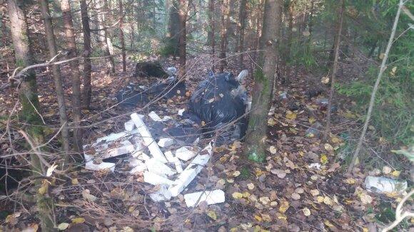Pasivaikščiojimą miške sutrukdė bjaurus vaizdas: ir kaip kyla tokia mintis?
