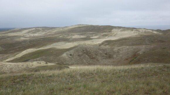 Pilkųjų kopų šlaitų kaita Didžiajame kopagubryje