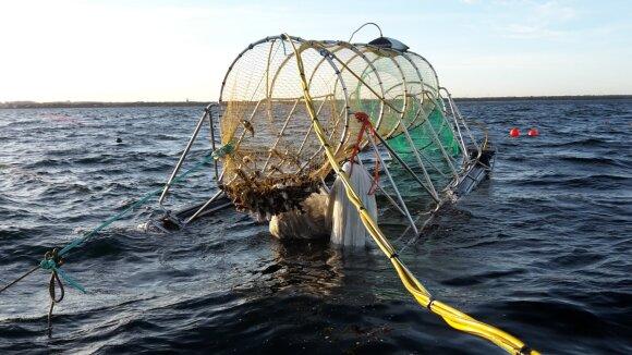 Į Lietuvą atkeliavo naujos pontoninės gaudyklės – kaip tai pakeis ruonių ir žvejų santykius?