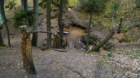 Vienas iš šaltinių Kleboniškio miško parke