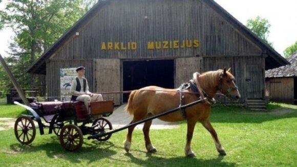 Arklio muziejus/ Muziejaus nuotr.