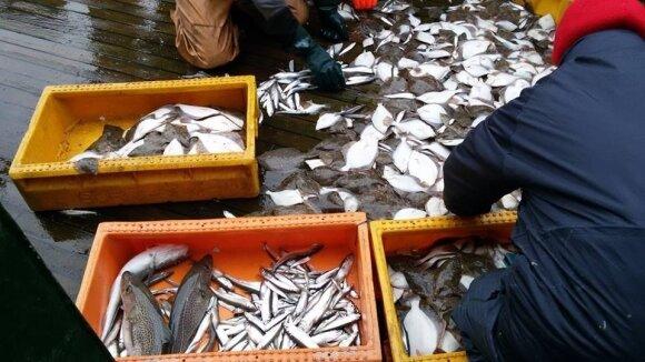 Mokslininkai vykdo tyrimus Baltijos jūroje