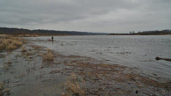 Nemuno ruože 100 m žemiau Dubysos įtekėjimo po lapkričio 1 d. vėl galima žvejoti, nors lašišų migracija,o gal ir nerštas čia tebevyksta