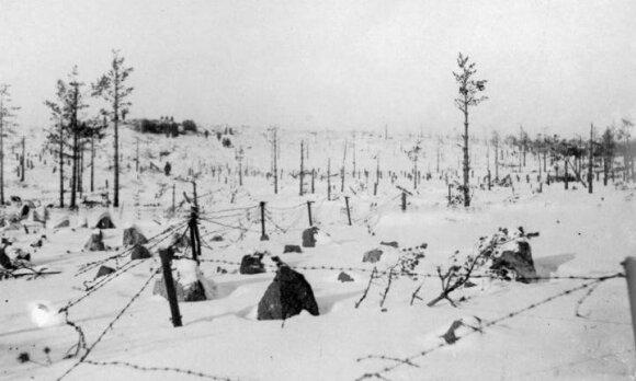 Jų įveikti Stalinas nesiryžo net du kartus: kodėl suomiai pasipriešino, o lietuviai sudvejojo