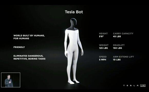 Tesla Bot. Tesla/Youtube