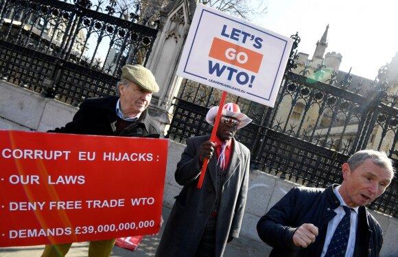 """""""Brexit"""" demonstracija prie JK parlamento"""