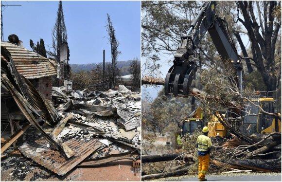 Australijos gaisrų pasekmės