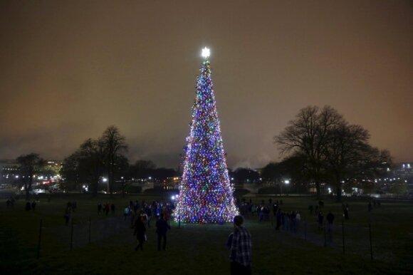 Kapitolijaus Kalėdų eglutė, JAV