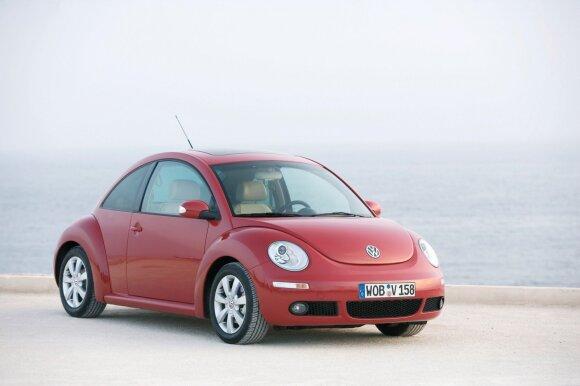 Volkswagen Beetle - Vabalas