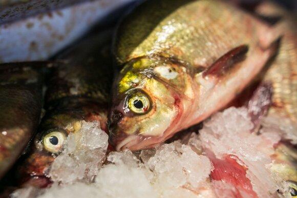 Kad šventės nebūtų sugadintos – kaip neapsigauti renkantis šaldytą žuvį