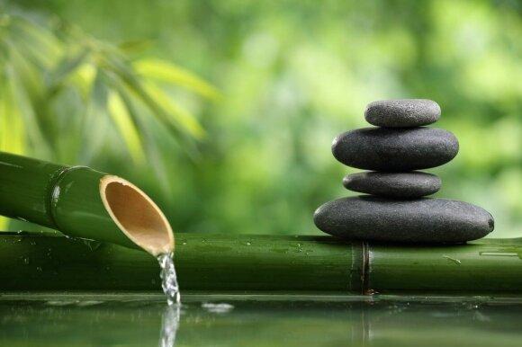 Zen filosofija: tuštuma ir netobulumas estetikoje