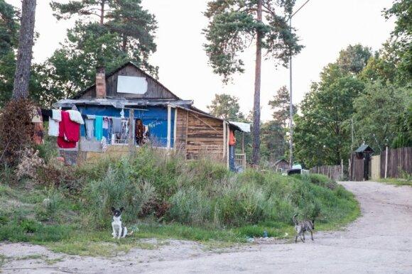 Vilniaus taboras