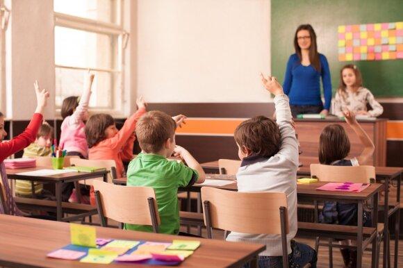 Moksleivių atstovė apie padėtį mokykloje: geram mokytojui vadovėlio nereikia