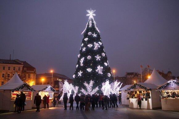 Kalėdų eglutė Vilniaus Katedros aikštėje 2014 m.