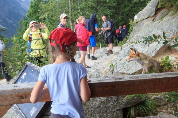 Į kalnus ir su vaikais - Aukštieji Tatrai (Slovakija)