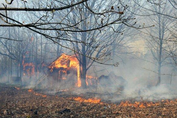 Miško gaisrai prie Černobylio atominės elektrinės