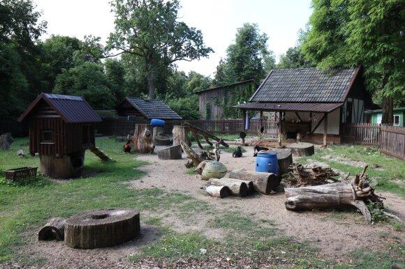 Paaiškėjo tiksli data, kada užveriamos zoologijos sodo Kaune durys: liko paskutinė proga įamžinti istorinius vaizdus