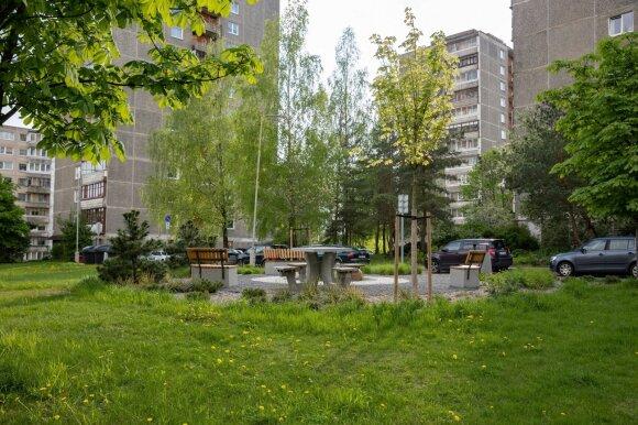 Žalią Vilnių kuriame kartu: per pusmetį – tūkstančiai sodinukų