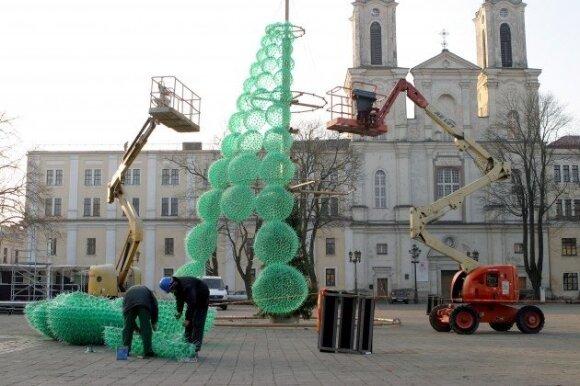 Ruošiama Kauno pagrindinė Kalėdų eglė 2011-aisiais
