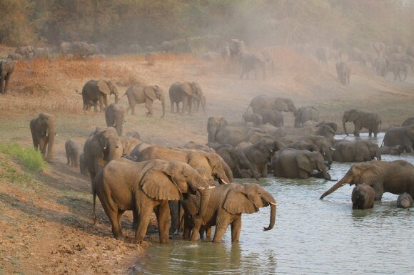 Geriausios kelionių kryptys gamtos ir nuotykių mylėtojams