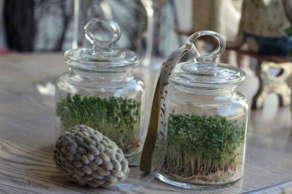 Dizainerės idėjos, kaip originaliai papuošti Velykų stalą