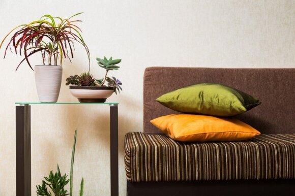Ruduo jūsų namuose: kaip sukurti jaukumą