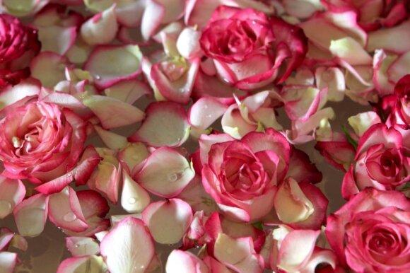 Trumpas aromaterapijos kursas: kaip į namus pritraukti laimę