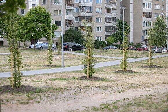 Miesto parkai
