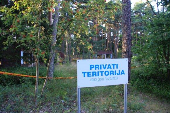 A.Knystautas: miškai turi likti Lietuvai