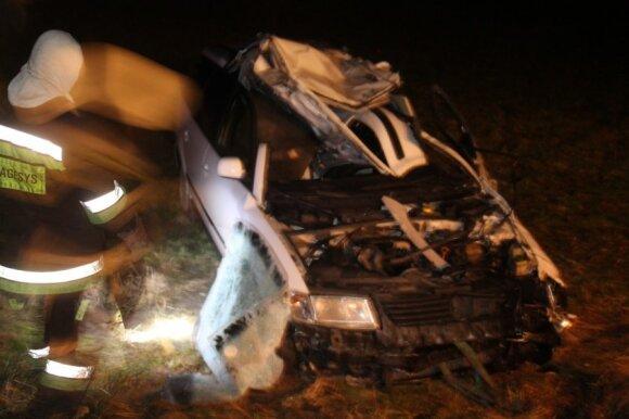 Panevėžio r. stumbras automobilį numušė nuo kelio