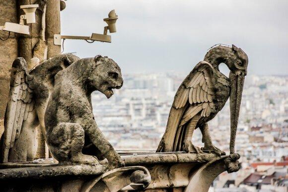 Paryžiaus Švč. Dievo Motinos katedros chimeros